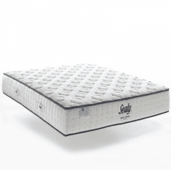 Matelas Sealy Royal - Collection Hotel